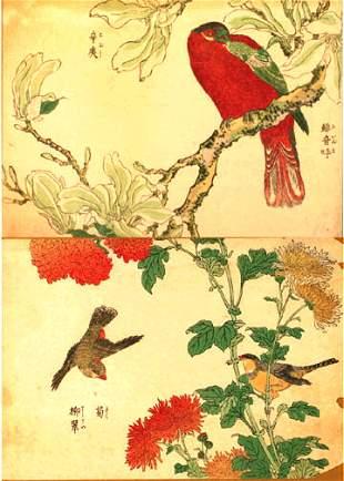 TWO EXOTIC BIRD PRINTS.