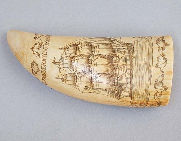2061: 2061 SCRIMSHAW TOOTH W/ORCA TOOTH. 19th