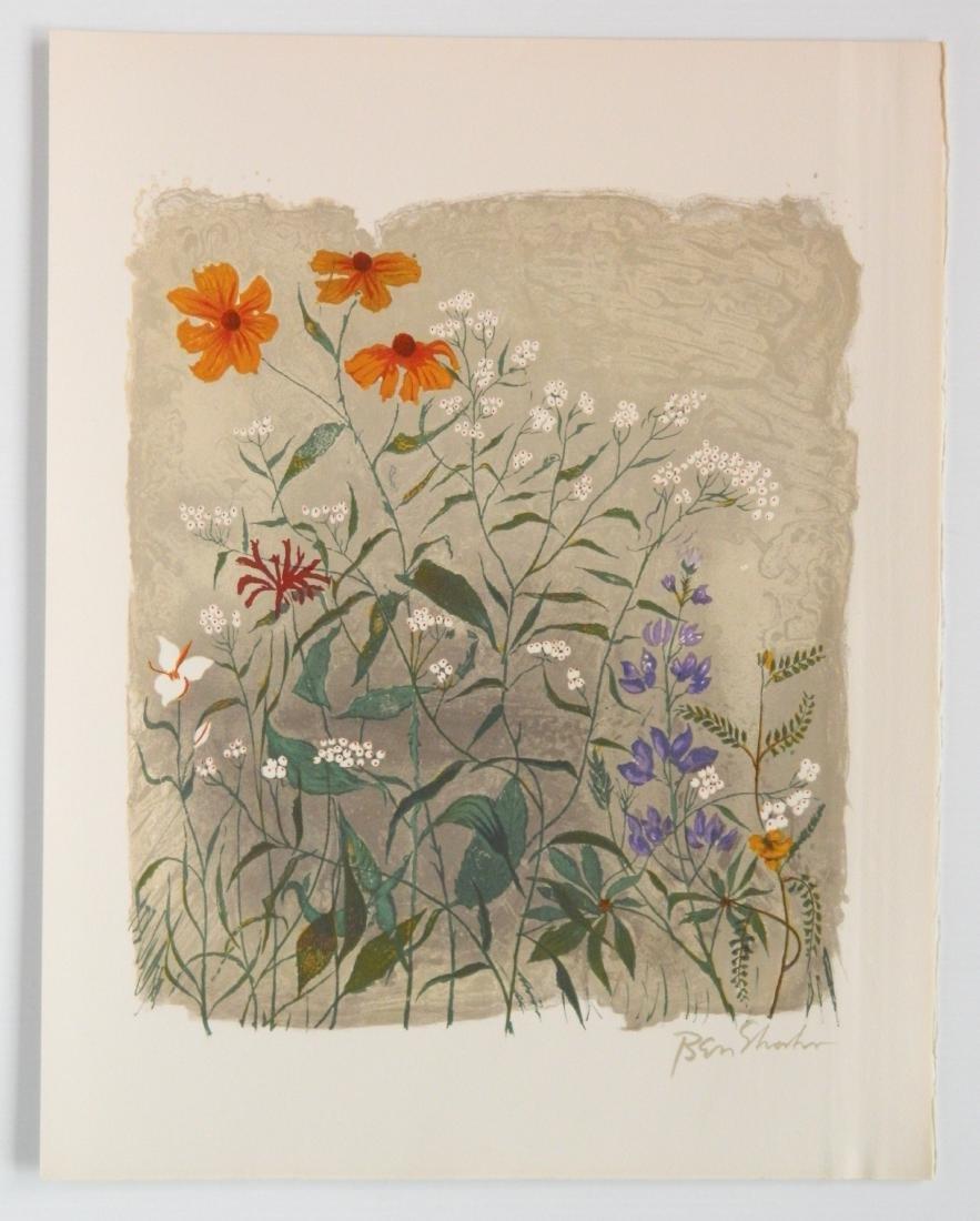 Ben Shahn portfolio of 24 lithographs - 9