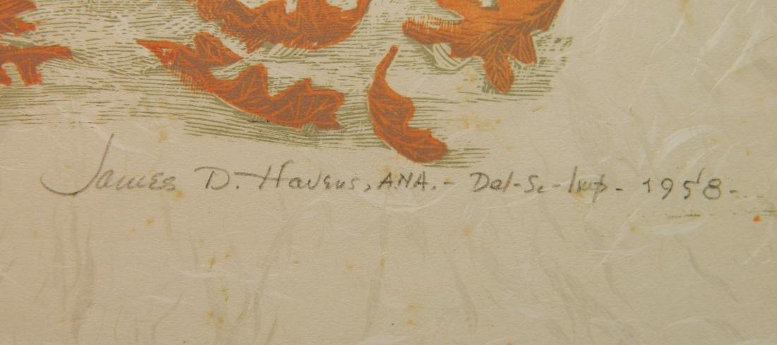 James Dexter Havens wood engraving - 3