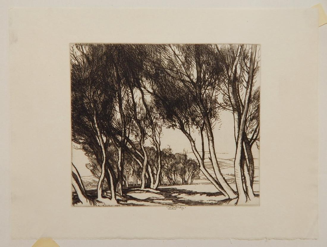 Roi Partridge etching - 2