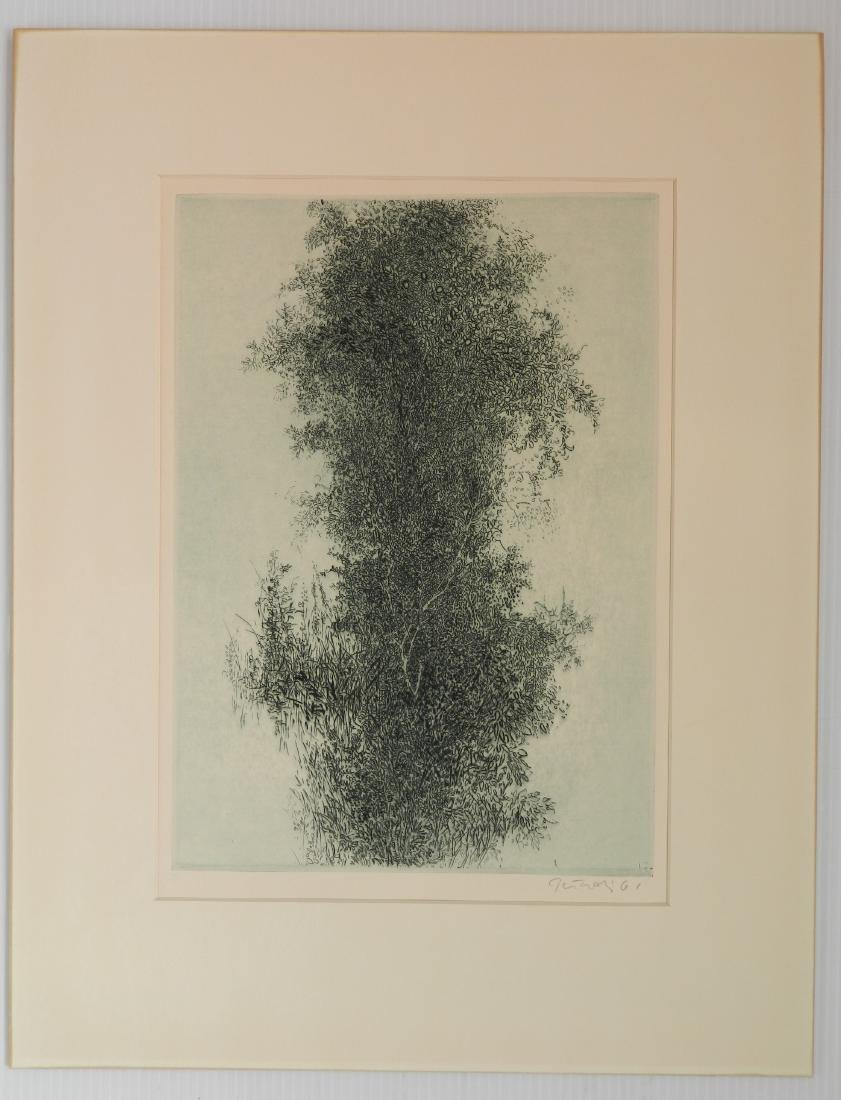 Gabor Peterdi etching and engraving - 2