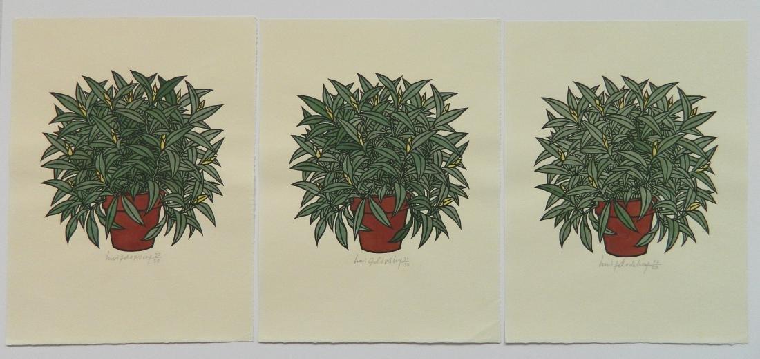 Jacques Hnizdovsky ''Flora Exotica'' woodcuts - 2