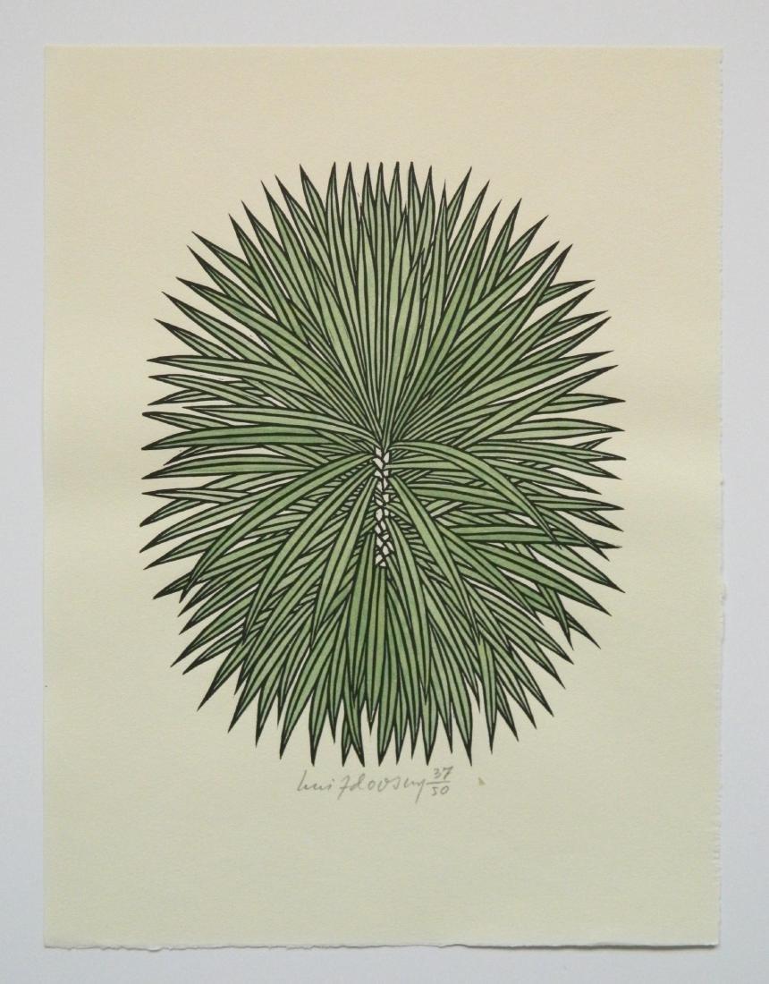 Jacques Hnizdovsky ''Flora Exotica'' woodcuts - 6