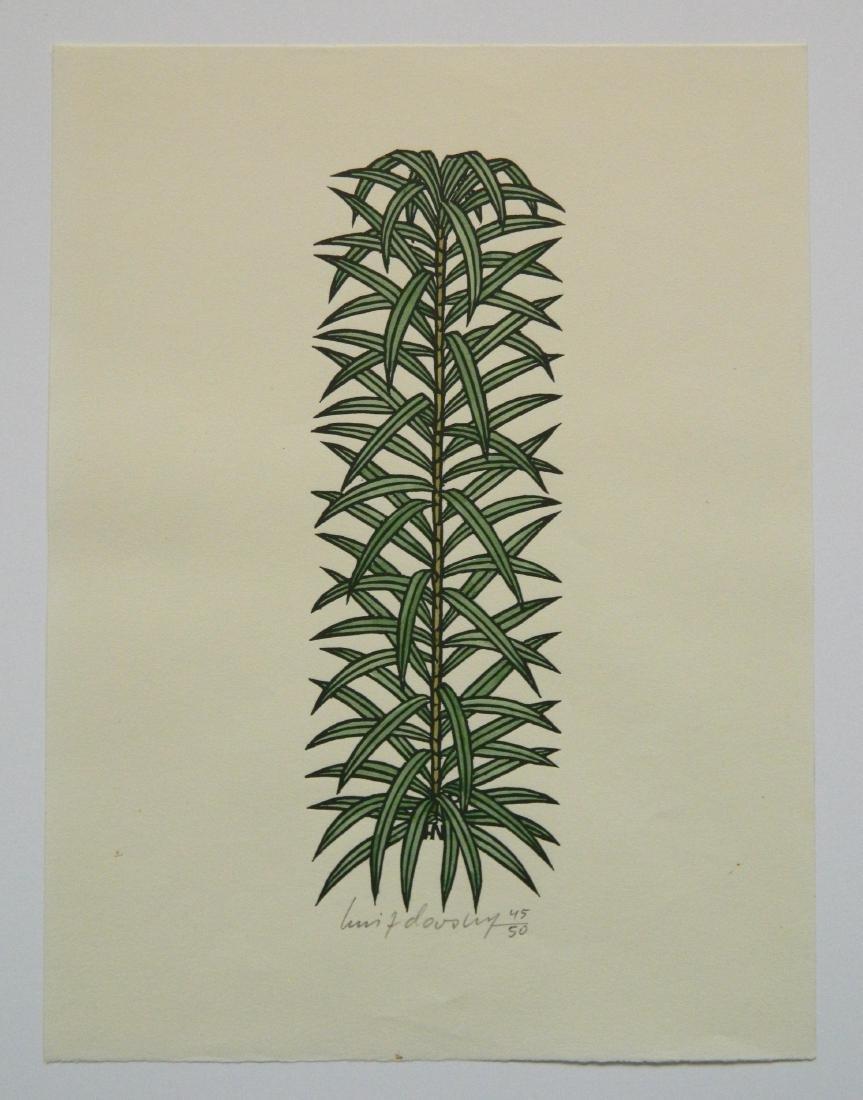 Jacques Hnizdovsky ''Flora Exotica'' woodcuts - 8
