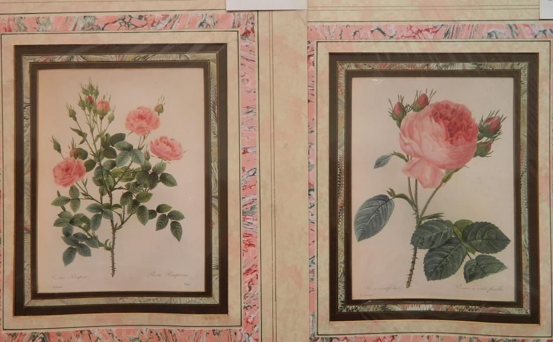24 Historical and botanical prints - 4