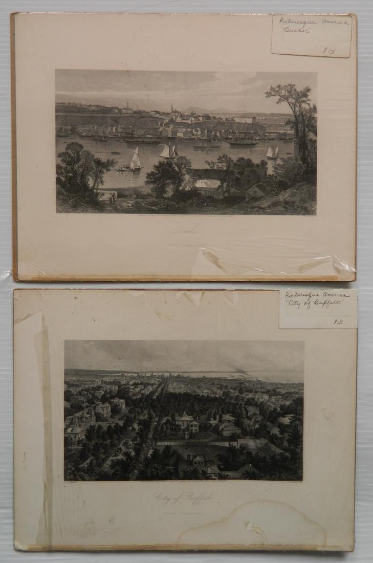 24 Historical and botanical prints - 6