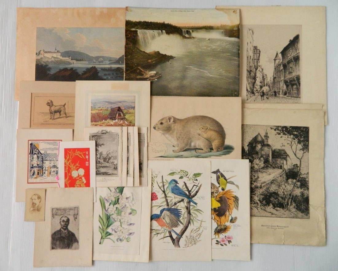 Large lot of works on paper - 5