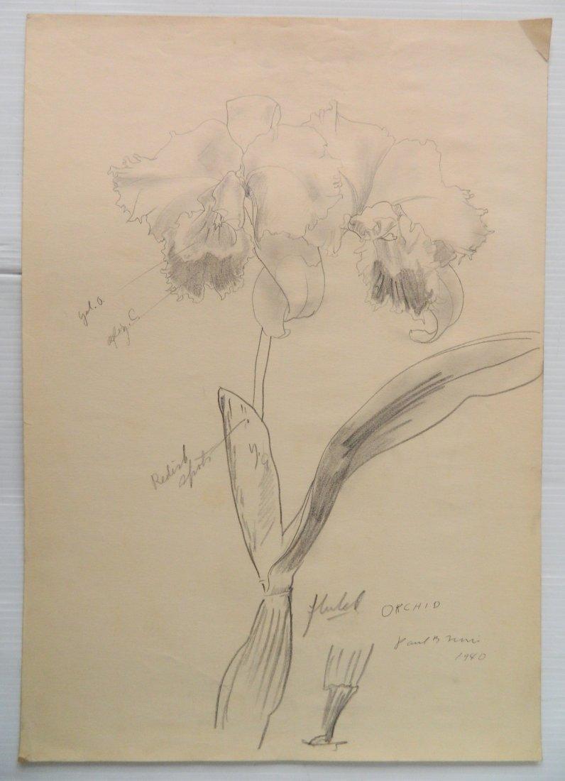 Paul B. Travis 5 graphite - 3