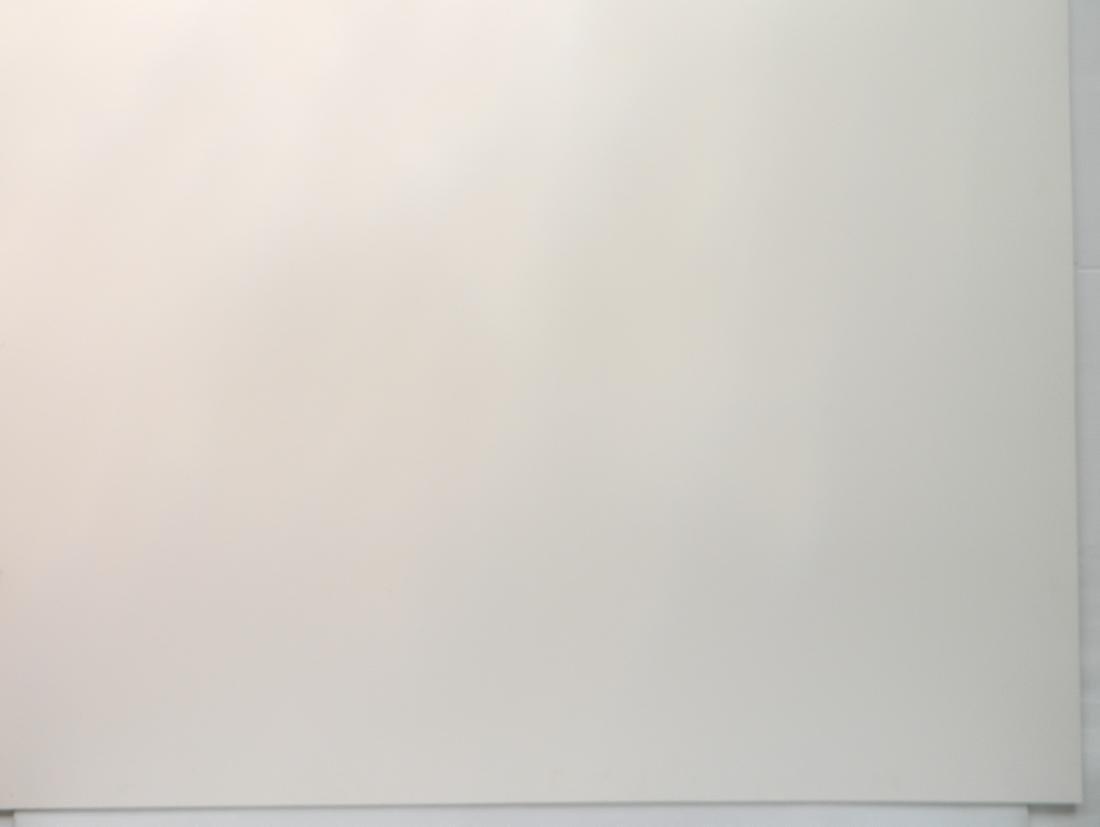 Phyllis Seltzer acrylic - 2
