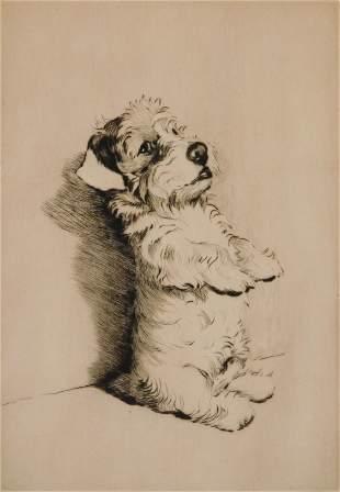 Cecil Aldin etching