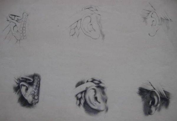 5: 19th c. American School- Ear studies