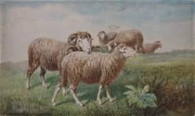 171 Charles T Phelan watercolor