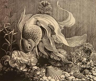Dorothy Lathrop wood engraving