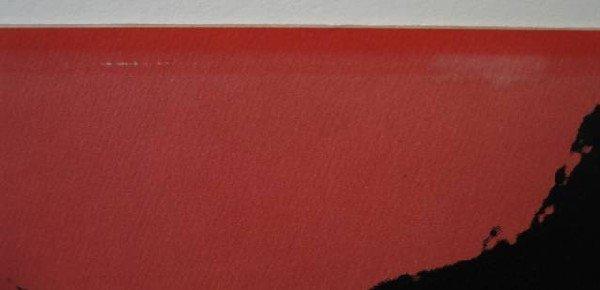 704: Andy Warhol lithograph - 6