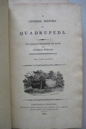 10: Thomas Bewick- A General History of Quadrupeds