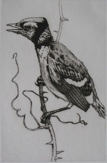 Charles Emile Heil etching and drypoint