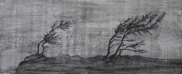 365: Dan Miller woodcut