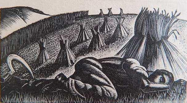 398: Clare Leighton wood engraving