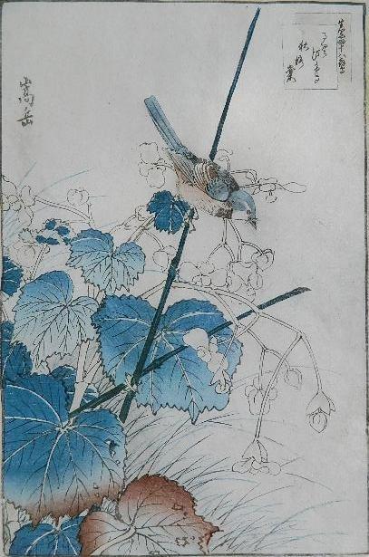 Sugaku Nakayama woodblock