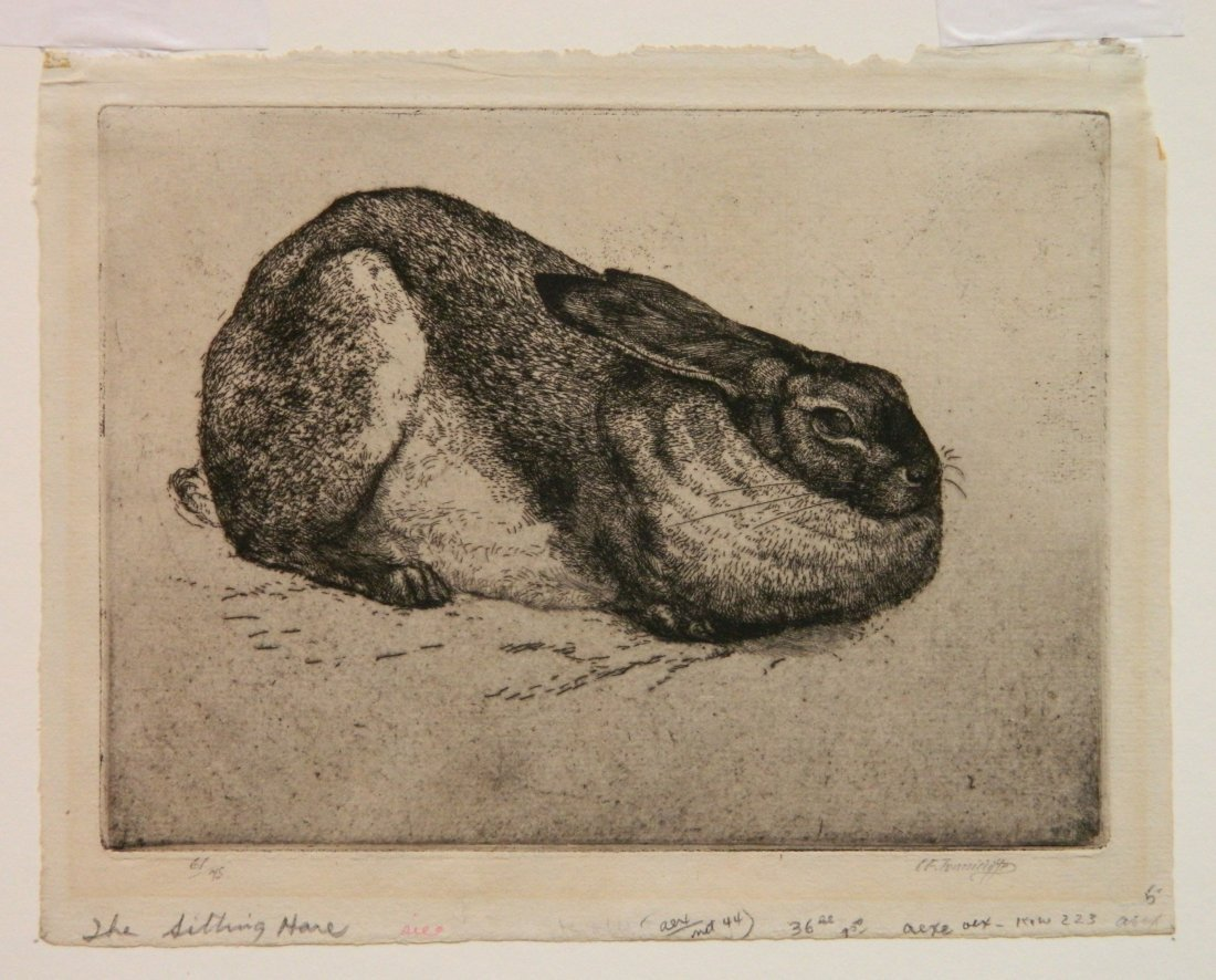 Charles Frederick Tunnicliffe etching - 2