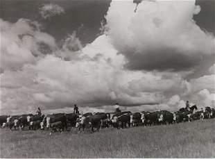 Arthur Rothstein vintage FSA photograph