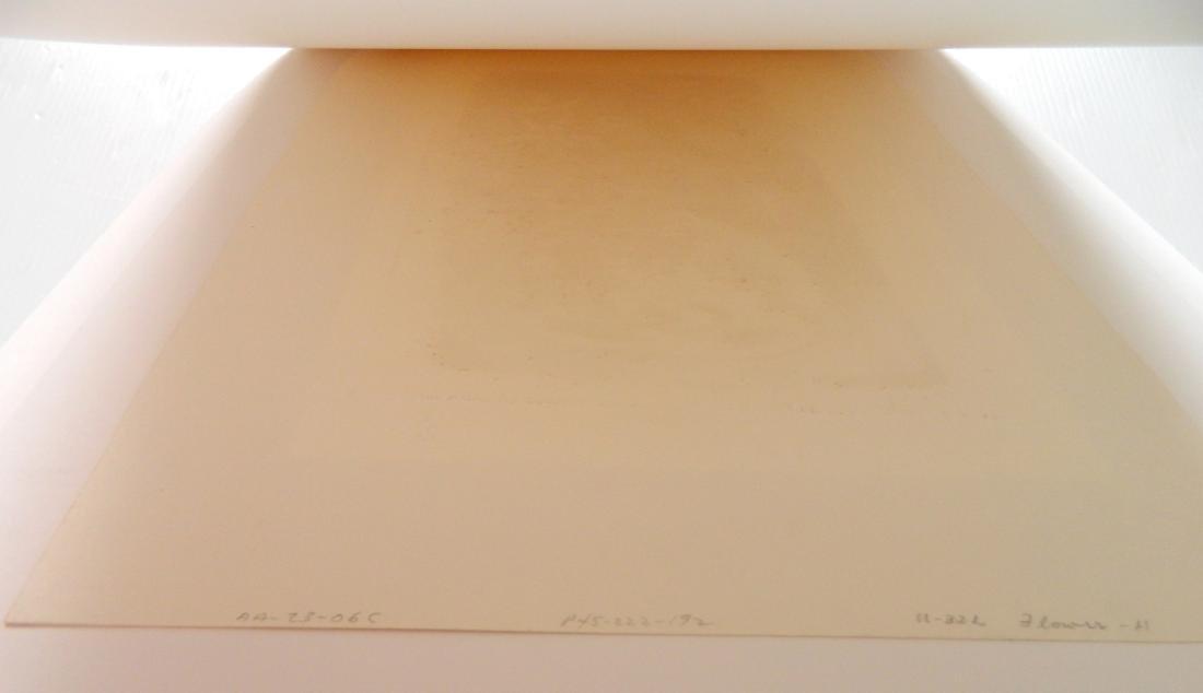 Kenji Ushiku 2 etchings - 8