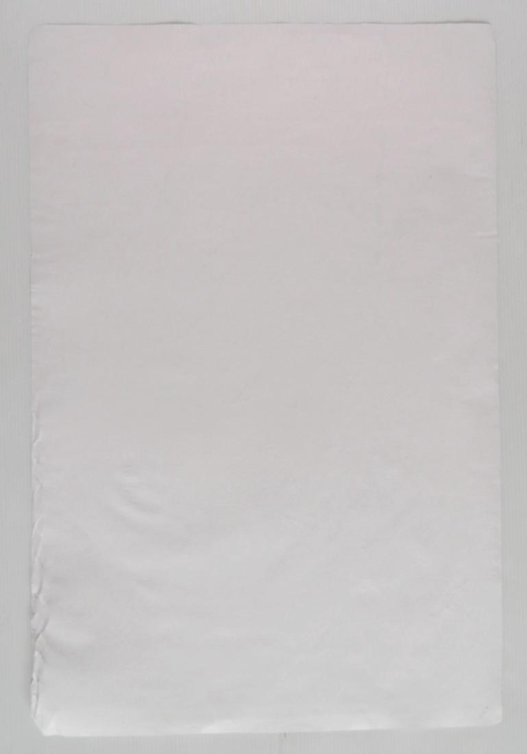 Oscar Kokoschka lithograph - 4