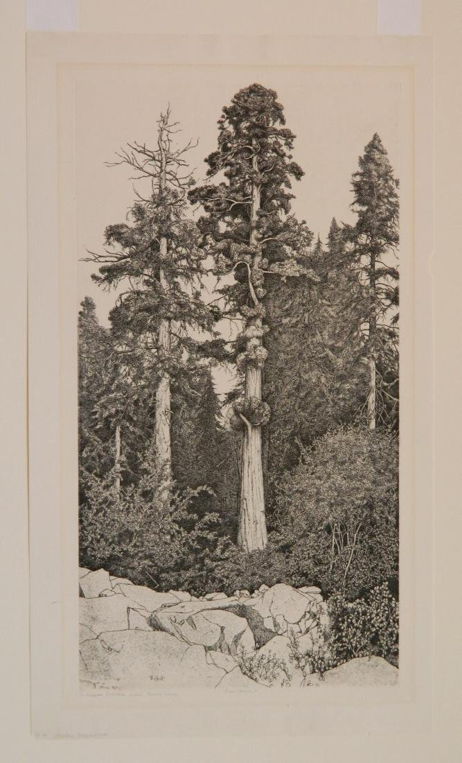 Ernest Haskell 2 etchings - 2