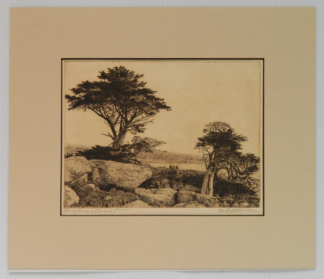 William C. Ostrander etching - 2