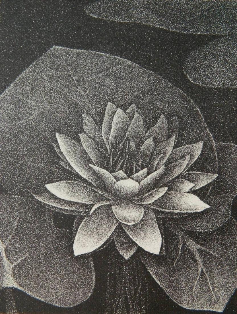 Henrietta Shore lithograph