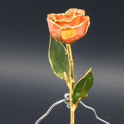 Real Long Stem Pink Rose Dipped in 24kt Gold