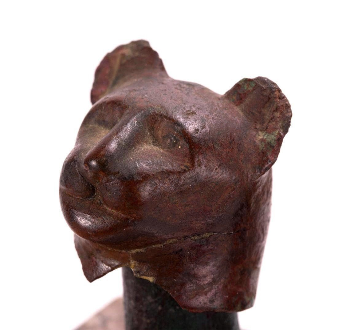 Ancient Egyptian Bronze Cat head . - 2
