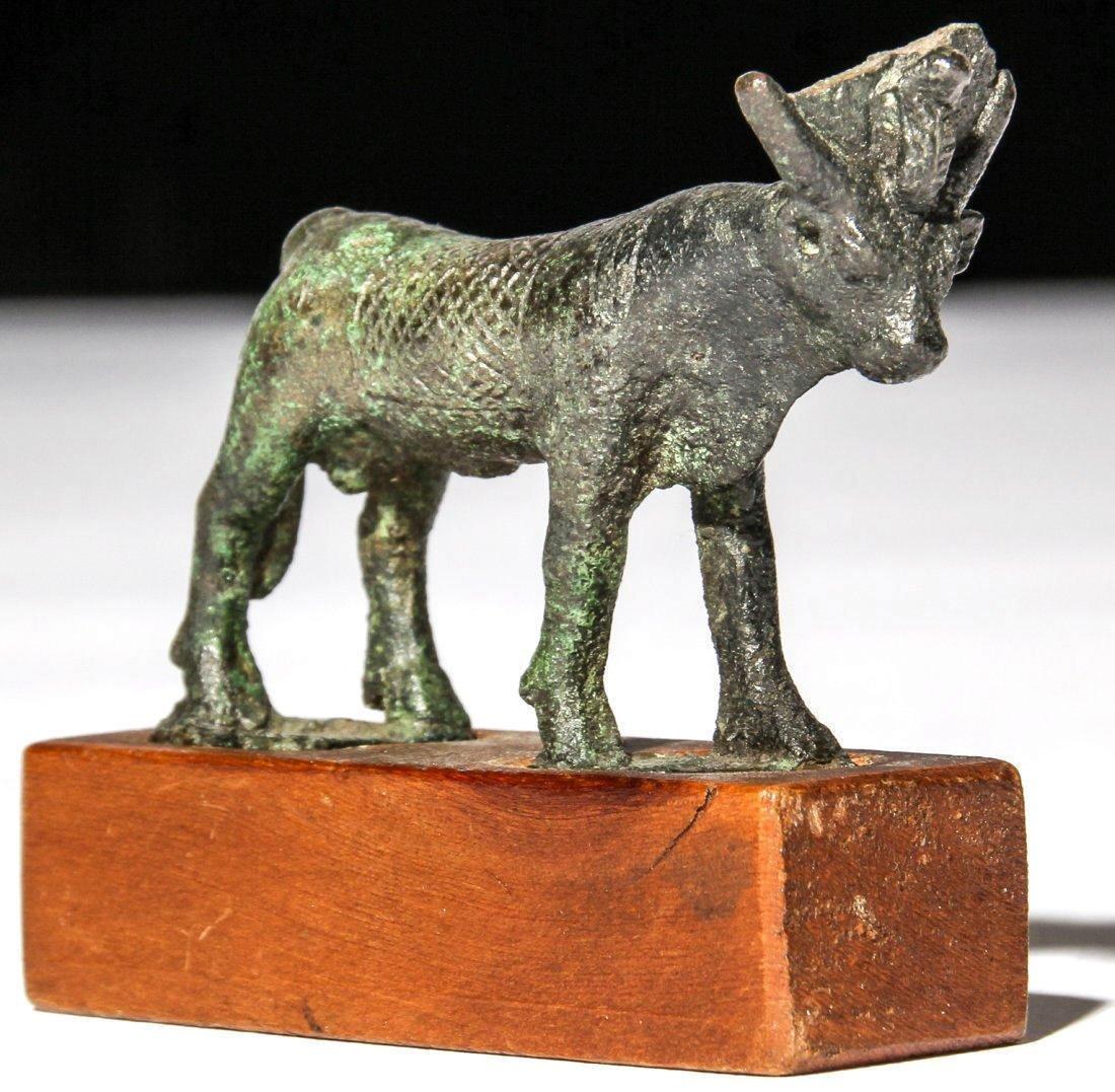 Ancient Egyptian Bronze Apis Bull . - 2