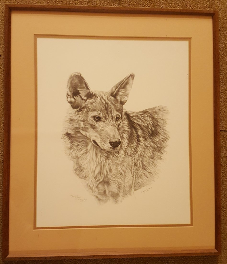 LANGFORD Signed and Framed Wolf Print