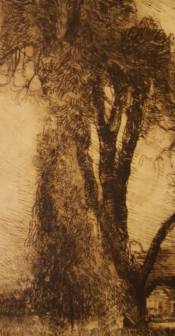 CARL KRAFFT Signed Etching The Willows - 5