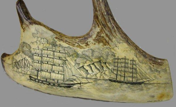 1019: Genuine Moosehorn with Fantastic Scrimshaw