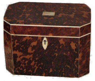 93: Regency 1815 Shell & Fully Decorated Tea Caddy
