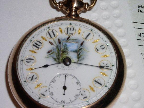 1005: 7J American Waltham 18-size, fancy dial, yellow g