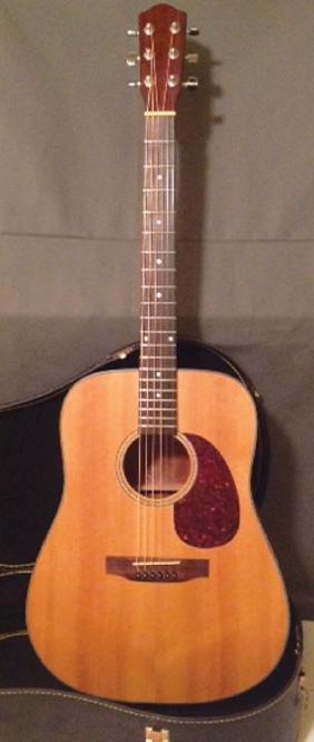 Dreadnaught Acoustic Guitar
