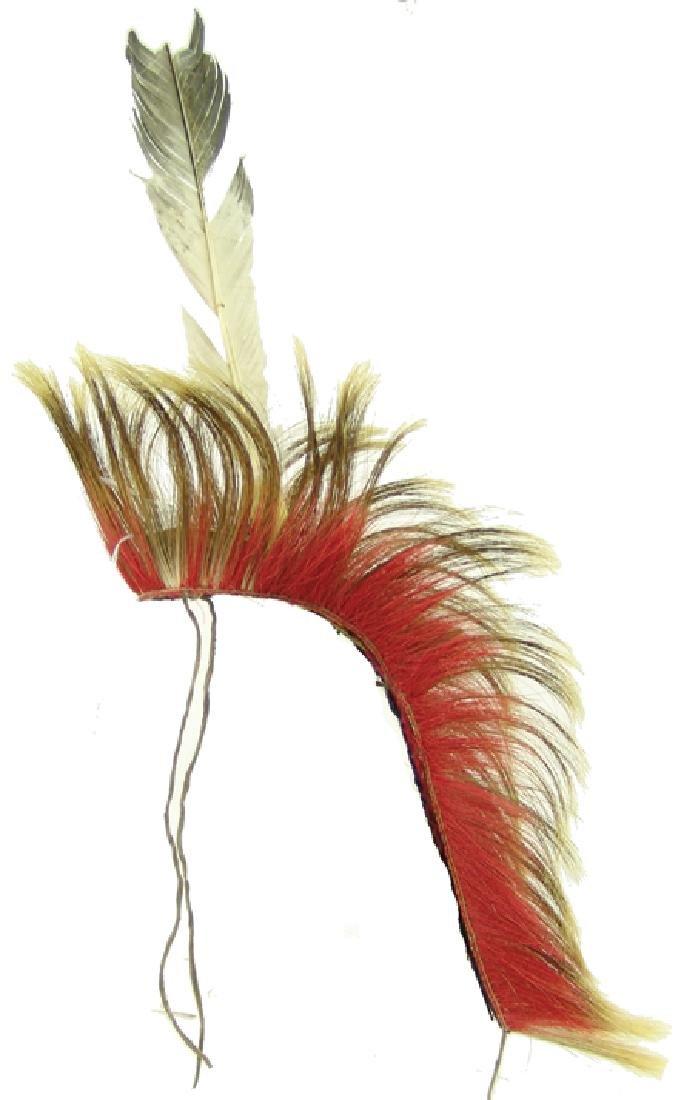 Plains Dancer's Roach