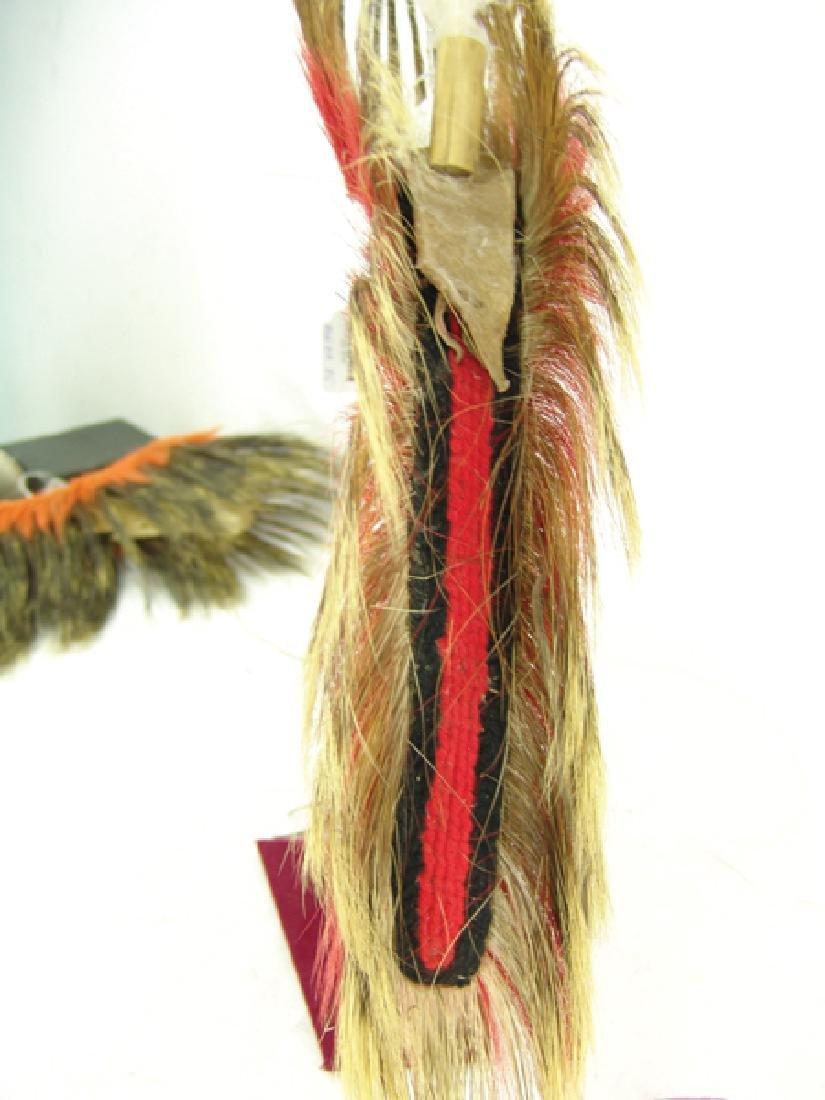 Plains Dancer's Roach - 7