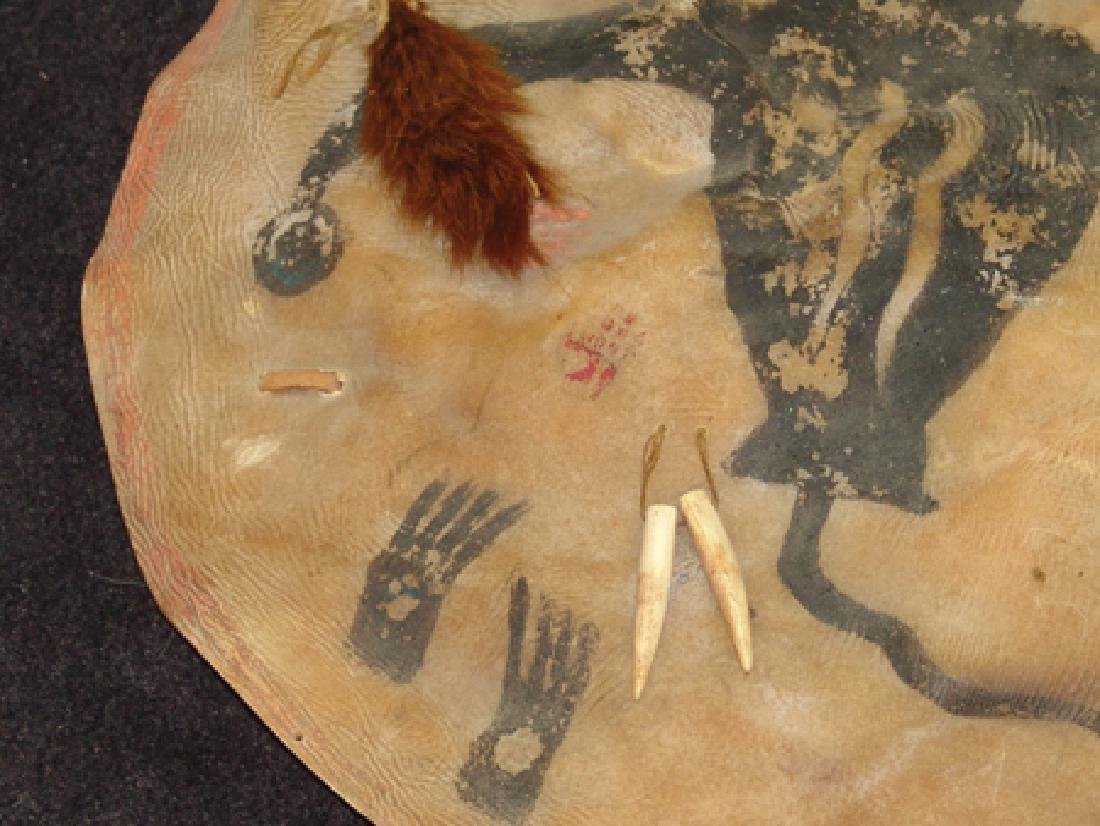 Lakota Buffalo Shield - 3