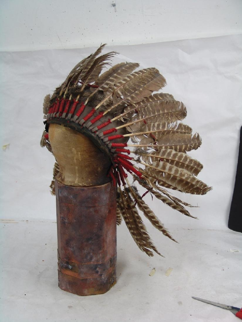 Feather Headdress Display - 2