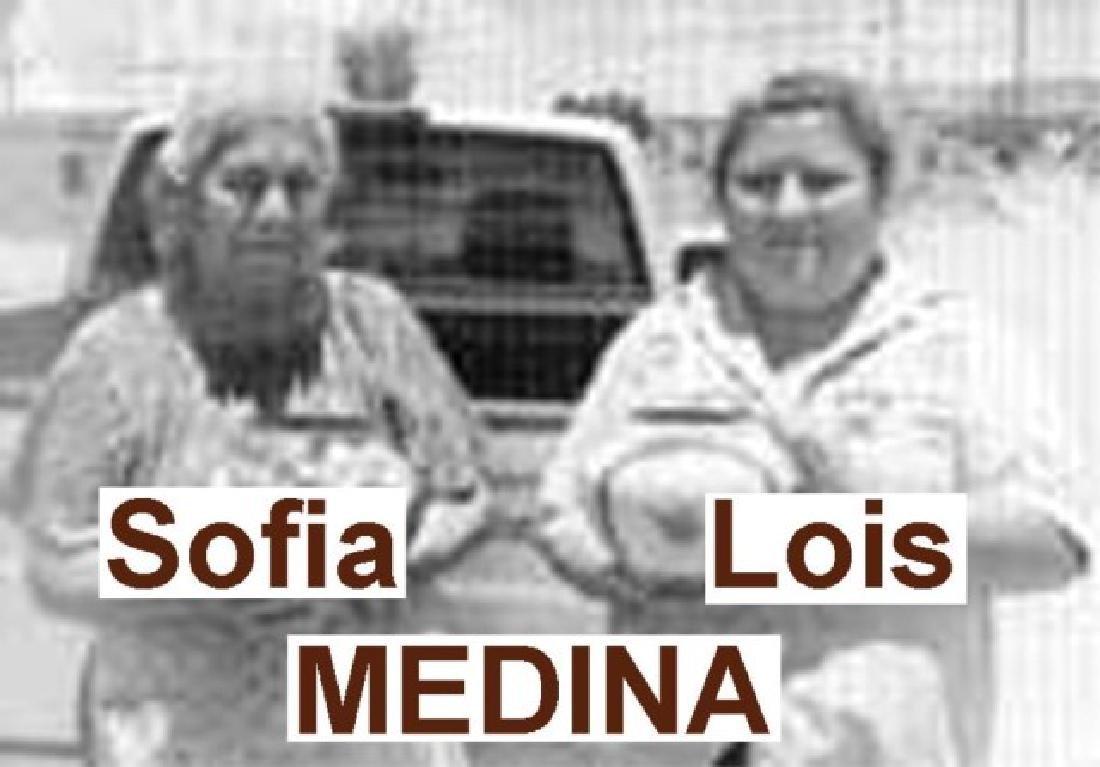Huge Zia Pottery Jar - Lois Medina (1959-2003) - 13