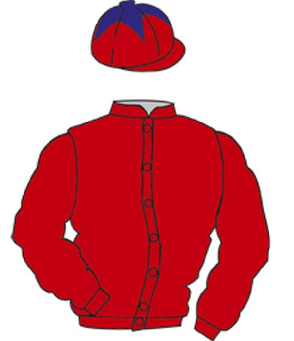 4: Distinctive Colours: RED, RED cap, PURPLE star