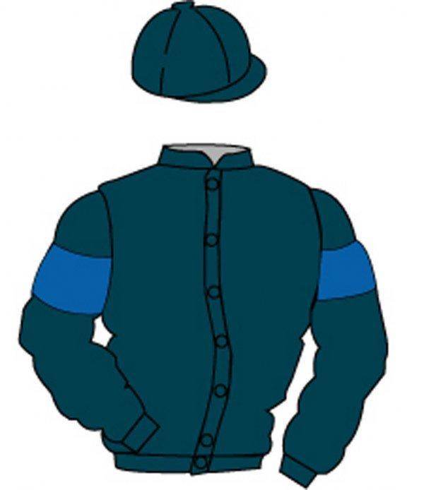 6: Distinctive Colours: DARK BLUE, ROYAL BLUE armlets