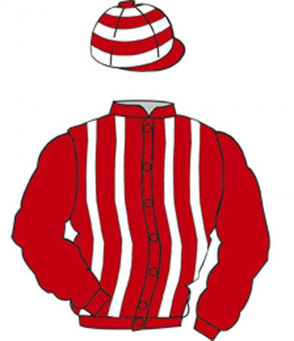 10: Distinctive Colours: RED and WHITE stripes, RED sle