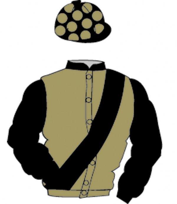 2: Historical Colours: GOLD, BLACK collar, sash, sleeve