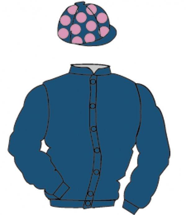 4: Distinctive Colours: DARK BLUE, PINK spots on cap